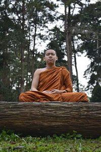 meditazione zen natura